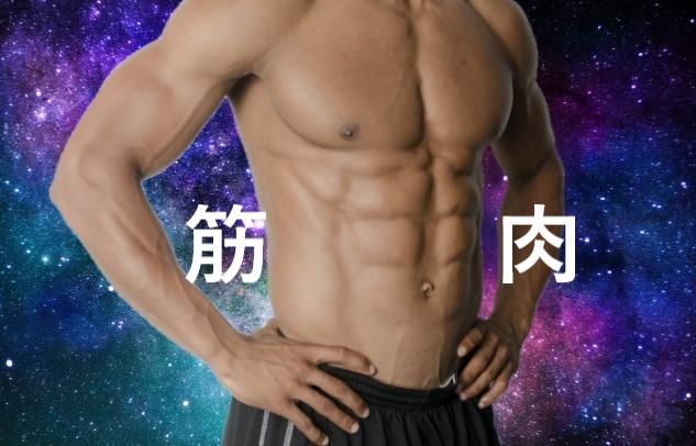 筋肉のすごい人